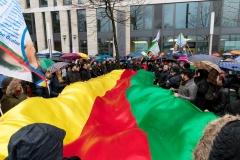 Demo_Afrin_nicht_allein-04