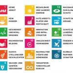 Nachhaltigkeit, Demokratie und Stadtgesellschaft