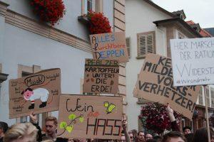 Rechtsextreme unerwünscht - Landau mit beeindruckendem Zeichen [mit Bildergalerie]