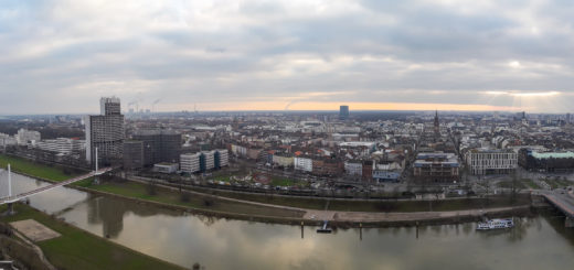 Endlich: Stadt Mannheim lässt rechtsextreme Wahlplakate abhängen