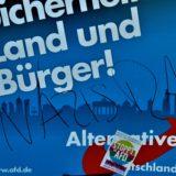 Speyerer AfD-Chef will Gegner wie Kriegsschwerverbrecher aburteilen